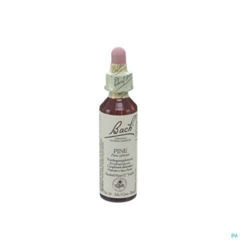 Bach Flower Remedie 24 Pine 20ml